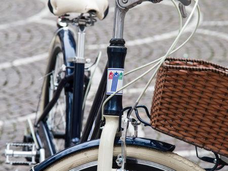 Cicli Brianza Telethon Glamour Dettaglio 08