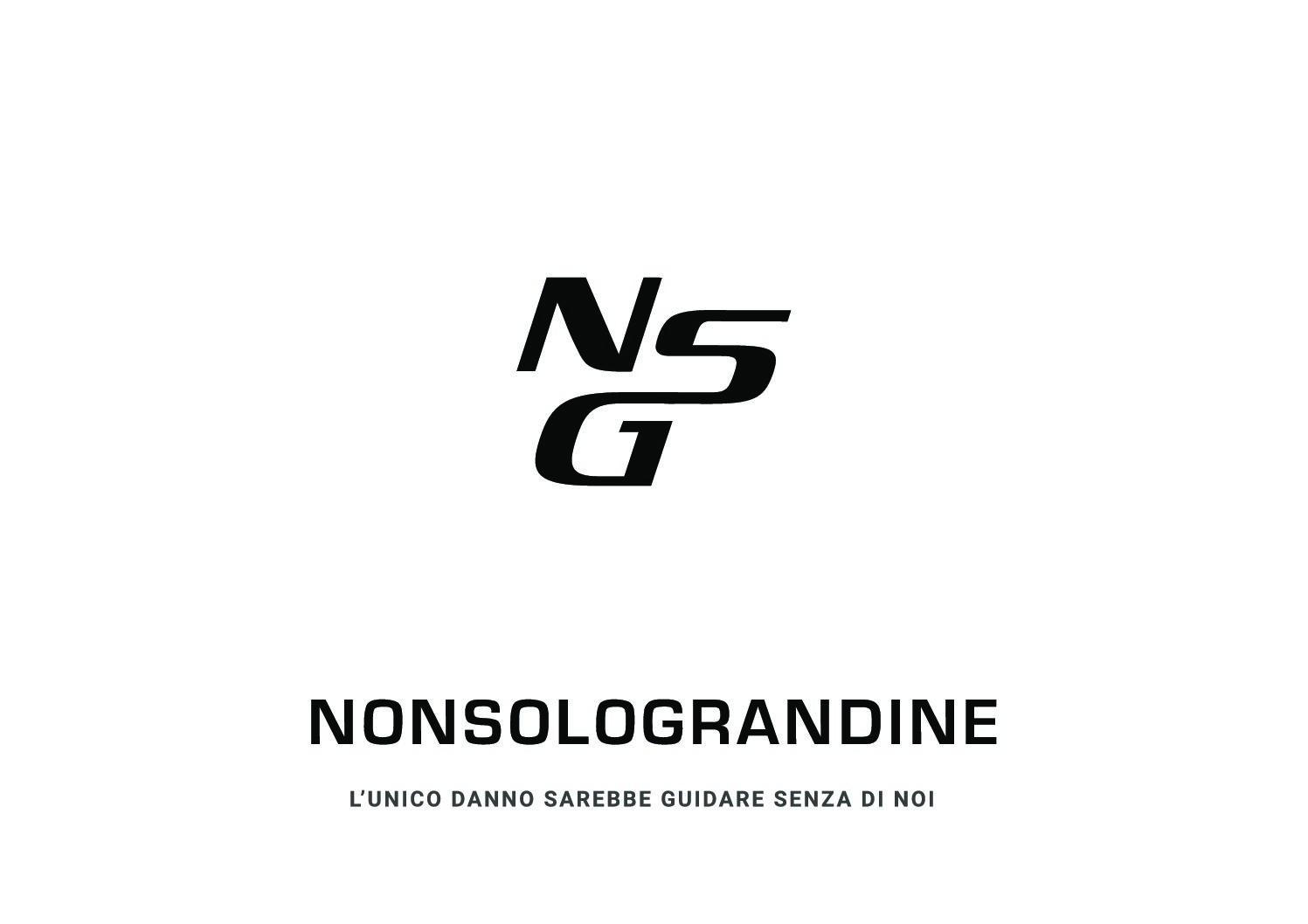 Logo_NSG_Nero